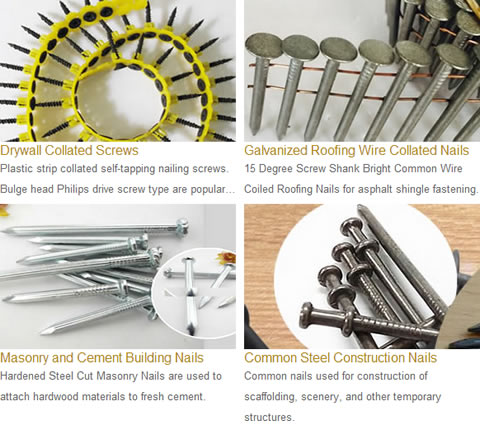Common Nails Drywall Collated Screws Galvanized Roofing Wire Collated